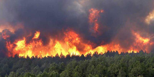 California Fire Season Over!