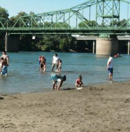 E.Coli Levels High in Lower American River!