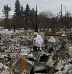 Butte Fire Clean Up Cost Three Billion $!