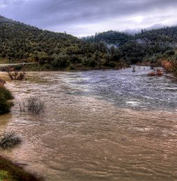 23 year old who fell into American River at Auburn Sunday Found Yesterday Drowned!