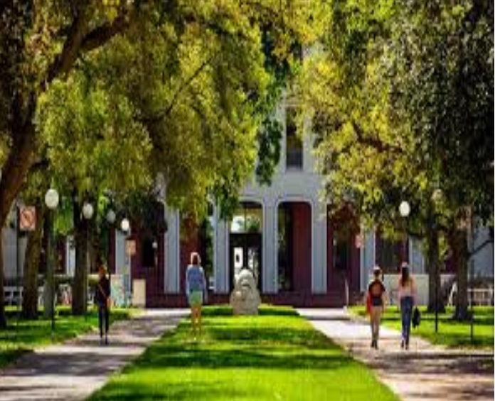 Colleges Start Reopen as Students Start To Move On Campus!
